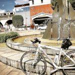奥多摩周遊道路サイクリング